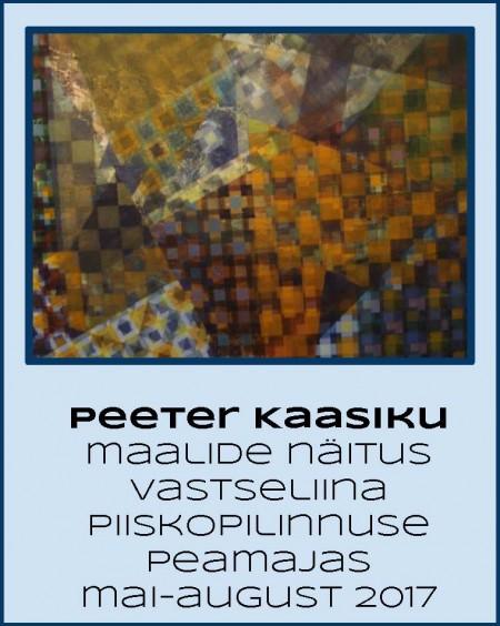 2017 PeeterKaasik